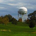 Sandusky Ohio - Water Tower by SRowe Art