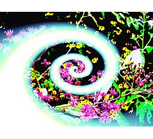 Spirals of Color (altered)  Photographic Print