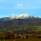 Mt Buller by Michael  Bermingham
