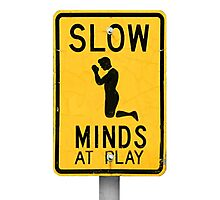 Slow Minds at Play Photographic Print