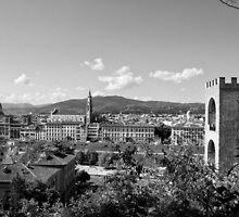 black and white Florence landscape by leofanini