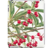 Christmas Berry iPad Case/Skin