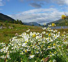Loch Leven, Scotland by LisaRoberts