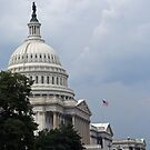 The Capitol Looking East by Cora Wandel