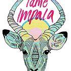 Tame Impala by svpermassive
