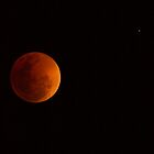 Fully eclipsed moon, Lunar Eclipse 28/08/2007 by Trent Wallis
