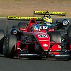 Leanne Tander in the Australian Formula 3 Championship by Trent Wallis