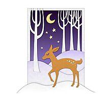 Winter Deer Photographic Print