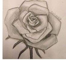 Rose by KristinaNP