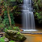 Horseshoe Falls by Andrew Bosman