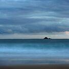 The Island by Jeff Davies