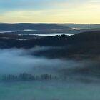 Morning mist by yanshee