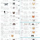 Housecat Breeds part 2 by Joumana Medlej