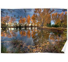 Autumn in Otago County Poster