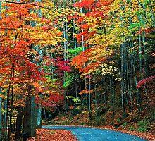 AUTUMN ROAD,RICH MOUNTAIN by Chuck Wickham