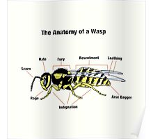 The Anatomy of a Wasp Poster