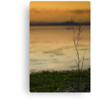 @ the waters edge Canvas Print