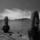 Boat Tie Down (Bodega Bay, CA) by BstillPhoto