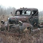Retired Workhorse by PDWright