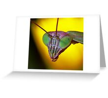 Praying Mantis (2) Greeting Card