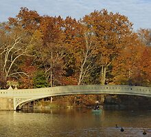 Bow Bridge, Central Park, New York by Tony Lupton