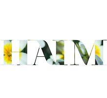 Floral HAIM Logo I by janinee