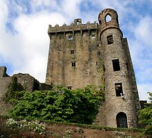 Blarney Castle, Co. Cork, Ireland by Lenarick