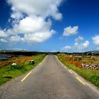 Co. Kerry, Ireland by Lenarick