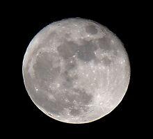 Moon Ball by Bob Hardy