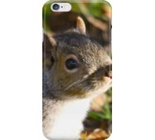 Cute Squirrel saying hello iPhone Case/Skin
