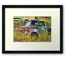Flowers for Studebaker Framed Print