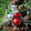 Wishing You Joy by MarjorieB