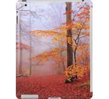 Beech Forest. November. iPad Case/Skin
