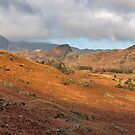 Langdale Fells  by Trevor Kersley