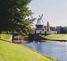 Typical Dutch Landscape by Debja