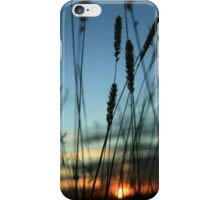 I'll see you in the morning... Free State Sunset, South Africa iPhone Case/Skin