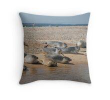 Seals sunbathing Throw Pillow