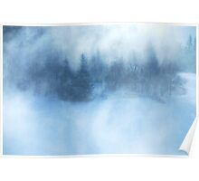 Snowy Black Forest Poster