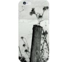 Posted Weeds iPhone Case/Skin