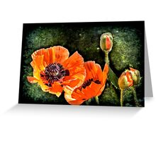Oriental Poppies family Greeting Card
