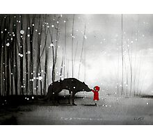 Little Red Riding Hood - The First Touch Photographic Print