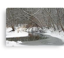 Early Winter At Petrifying Springs Metal Print