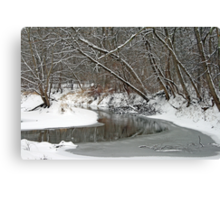 Early Winter At Petrifying Springs Canvas Print