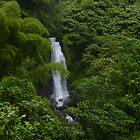 Dominica Falls I by John Harrison