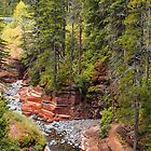 Red Rock Canyon by algill