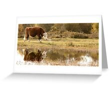 Cattle on the Common - Greenham Greeting Card
