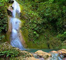 Cascades Waterfall. Vanuatu. by Stephen Kilburn