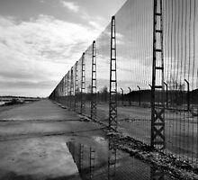 Perimeter Fence, Missile Silos - Greenham Common by Samantha Higgs