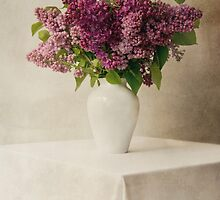 Lilacs in white flowerpot by JBlaminsky
