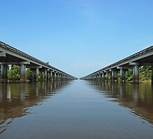 Atchafalaya Basin Bridge by Bonnie T.  Barry